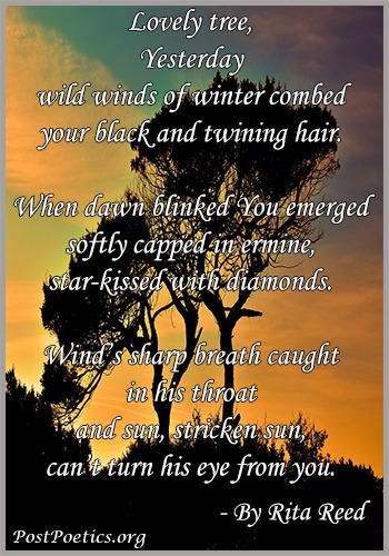Poem about Nature